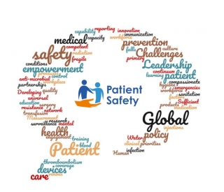 A Decade of Patient Safety 2020-2030